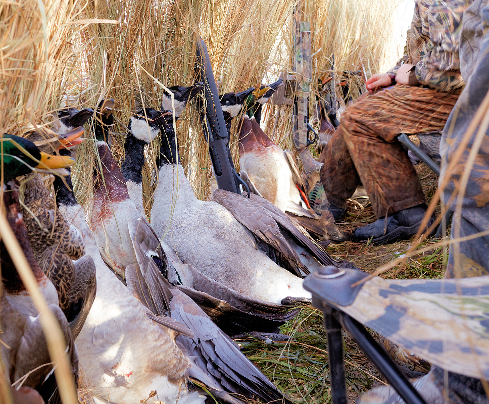 Late Season Duck Hunting Tips