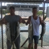 Lake Texoma Cast And Blast Trips - North Texas Waterfowl - Lake Texoma Striper Fishing